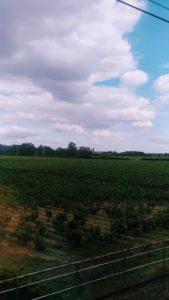 La campagne vue du train