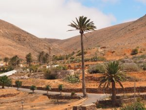 Le village de Bettancuria à Fuerteventura
