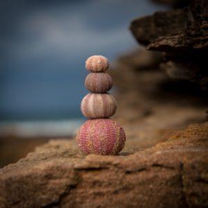 le CRET pour trouver son équilibre de vie