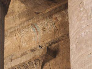 Un pigeon sur un temple égyptien