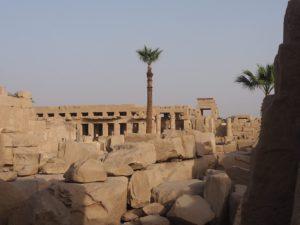 Palmier à Karnak