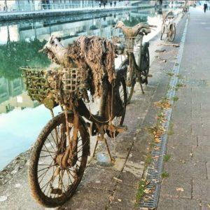 Velib repêché dans le canal de l'Ourcq