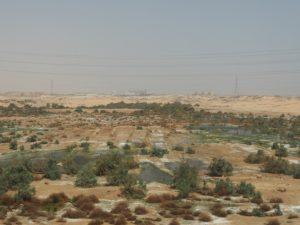 Les cataractes du Nil