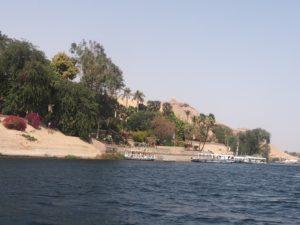 Le jardin botanique d'Assouan