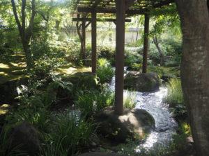 Jardin samouraï kokoen
