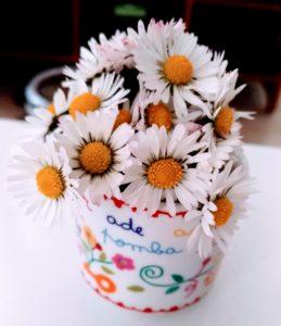Un petit bouquet de pâquerettes