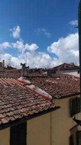 Sur les toits de Florence