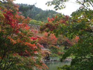 Hida en automne