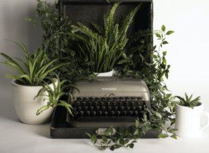 Machine à écrire, déco
