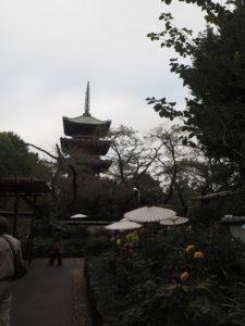Pagode du parc Ueno vue du jardin des dahlias