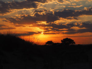 Soleil couchant sur la plage entre Saint Cyprien et Canet