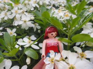 Au printemps, je retrouverai ma liberté