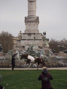 Un cheval devant le Monument aux Girondins