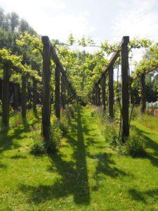 Le parc de Bercy